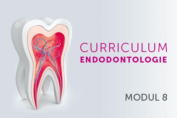 Dentale Traumatologie