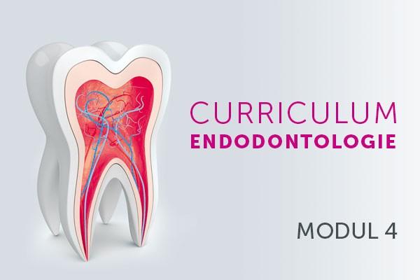 Abrechnung endodontischer Leistungen
